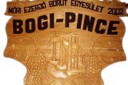 Bogi Pince - Csókakő